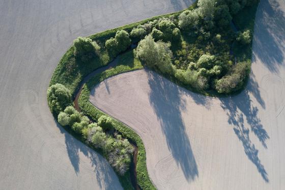 Joenmutka pellolla