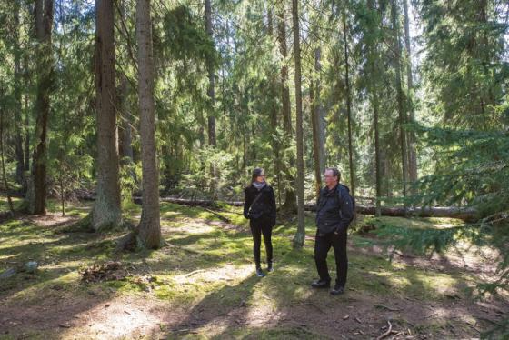 Tiina Elo ja Keijo Savola metsässä