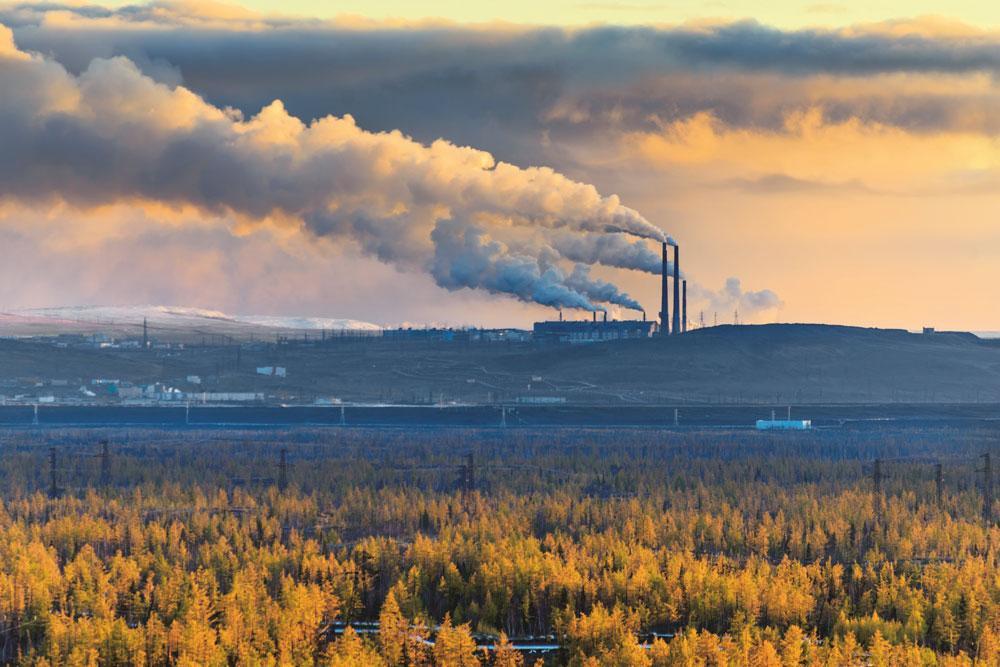 Metsää ja päästöjä