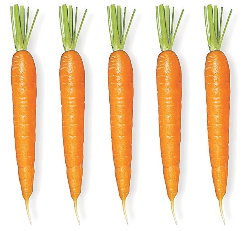 Porkkanat.