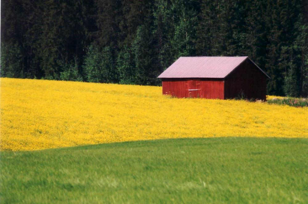 Maataloutta.