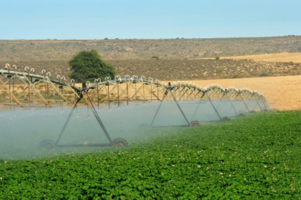 Keinokastelua Etelä-Afrikkalaisella tilalla.