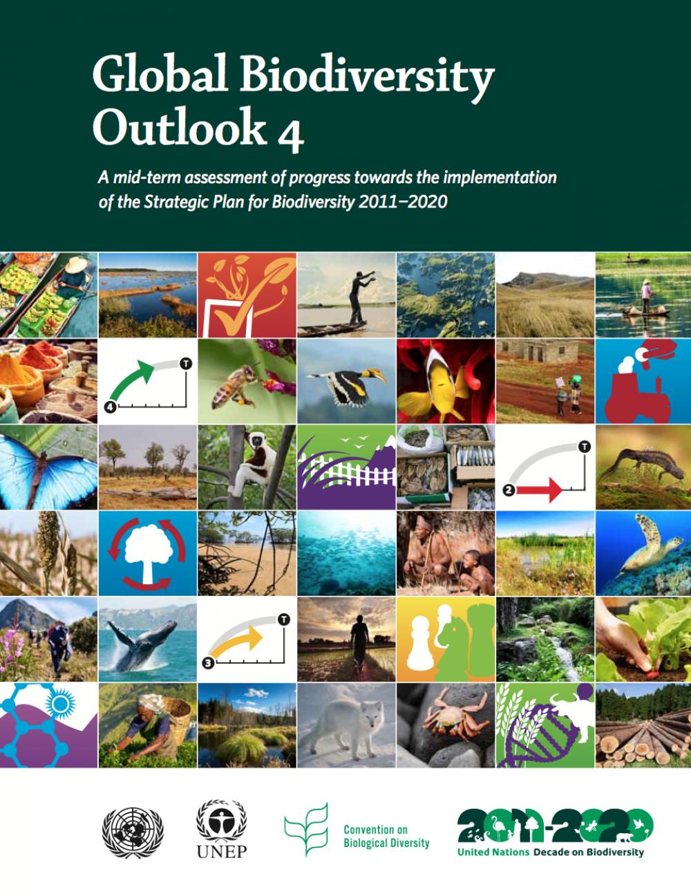 Global Biodiversity Outlook 4 -kansi.