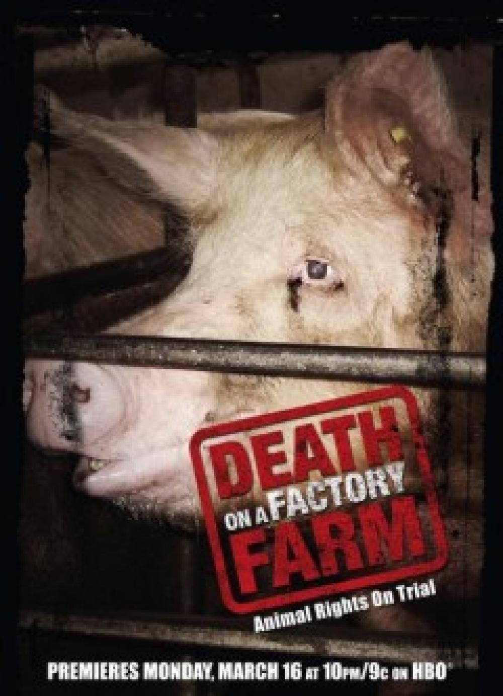 Death on a Factory Farm -elokuvan juliste.