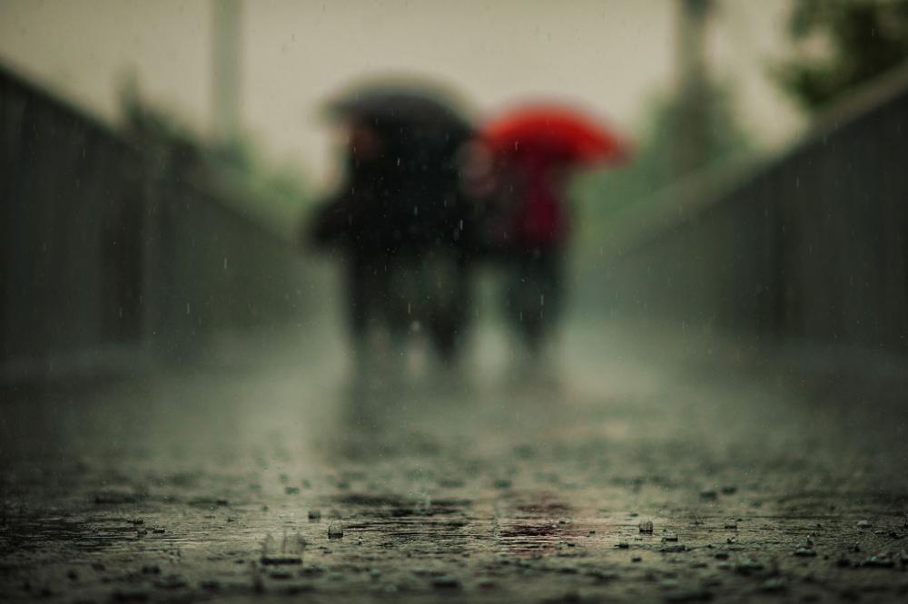 Sadetta